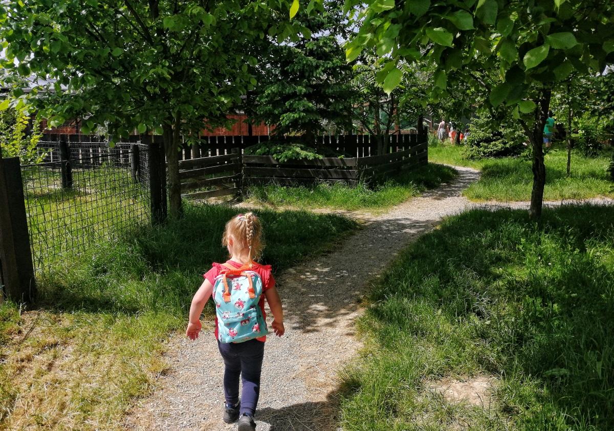 zoo w Wojciechowie
